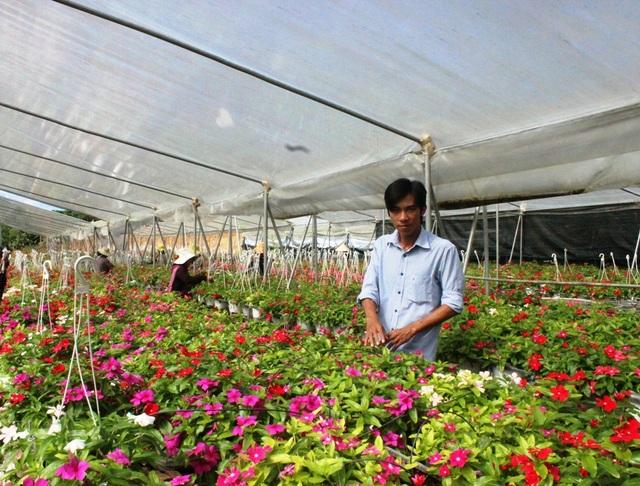 Nguyễn Anh Duy bên trang trại hoa của mình