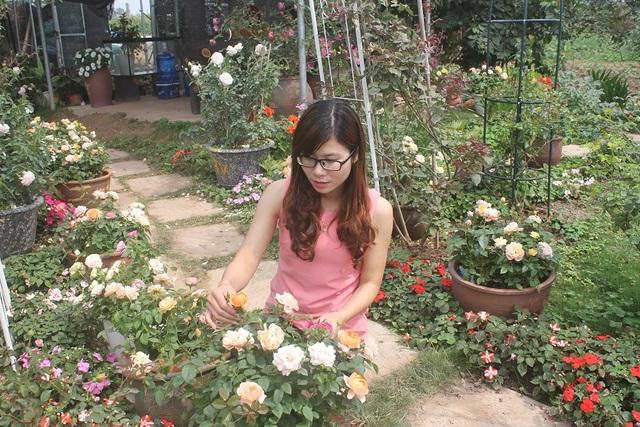 Phạm Thiên Trang - chủ vườn hoa hồng cổ nổi tiếng ở Hà Nội