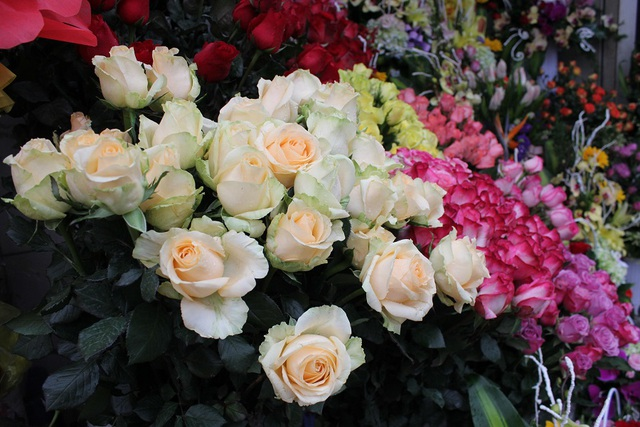 Các loại hoa hồng nội đía có giá mềm hơn và cũng đa dạng nhiều loại cho khách lựa chọn