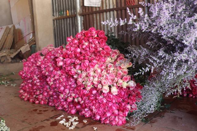 Cận lễ 20/11, các loại hoa Đà Lạt chỉ tăng giá nhẹ