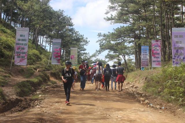 Lối vào đồi cỏ hồng khá gồ ghề nhưng nhiều du khách vẫn không ngại dạo bộ tiến vào trong khu vực lễ hội