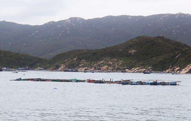 Trước đó, hôm 4/11, bão số 12 quét qua tỉnh Khánh Hòa gây thiệt hại nặng nề về người và của, các lồng bè nuôi hải sản trên biển đa phần bị đánh sập