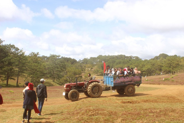 Du khách được trải nghiệm đồi cỏ hồng trên xe máy cày