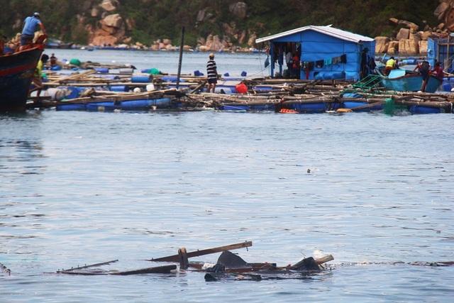 Lồng bè nuôi trồng hải sản ở vùng tâm bão huyện Vạn Ninh (Khánh Hòa) tan hoang sau bão số 12