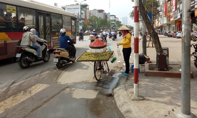 Mận đầu mùa được người bán chở trên những chiếc xe đạp với giá dao động từ 180.000 - 200.000 đồng
