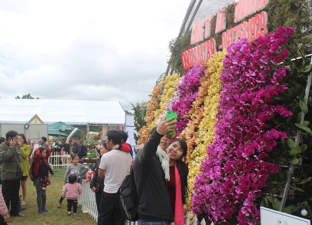 Những không gian hoa độc đáo chỉ có tại Lễ hội hoa Đà Lạt 2017 - 10
