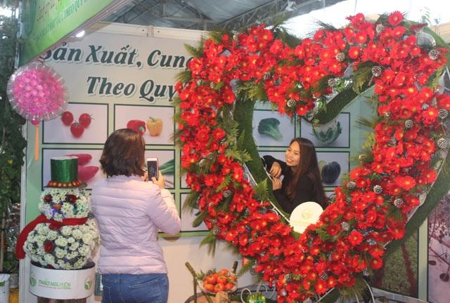 Những không gian hoa độc đáo chỉ có tại Lễ hội hoa Đà Lạt 2017 - 9