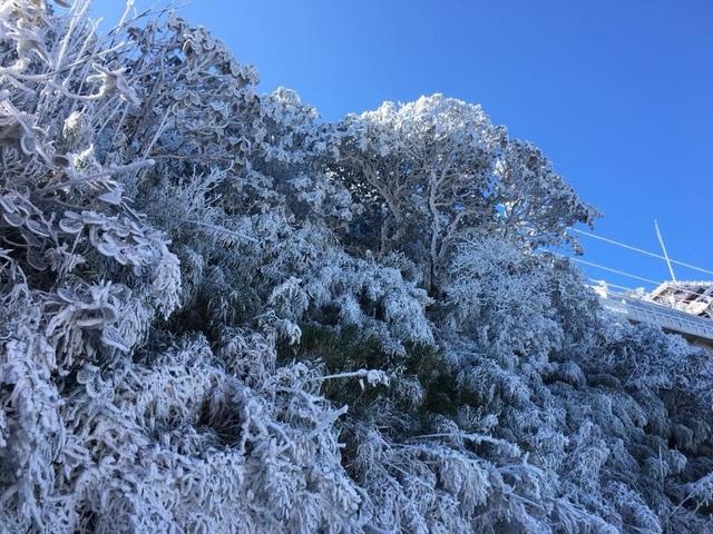 Hình ảnh băng tuyết tuyệt đẹp phủ trắng Fansipan - 2