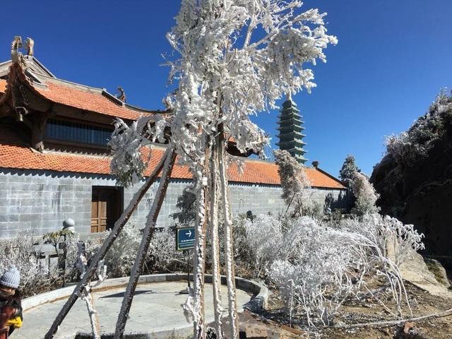 Hình ảnh băng tuyết tuyệt đẹp phủ trắng Fansipan - 4