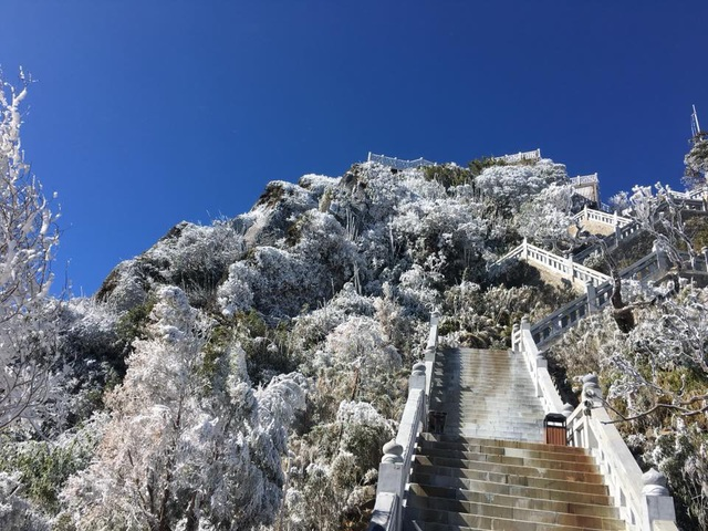 Hình ảnh băng tuyết tuyệt đẹp phủ trắng Fansipan - 5