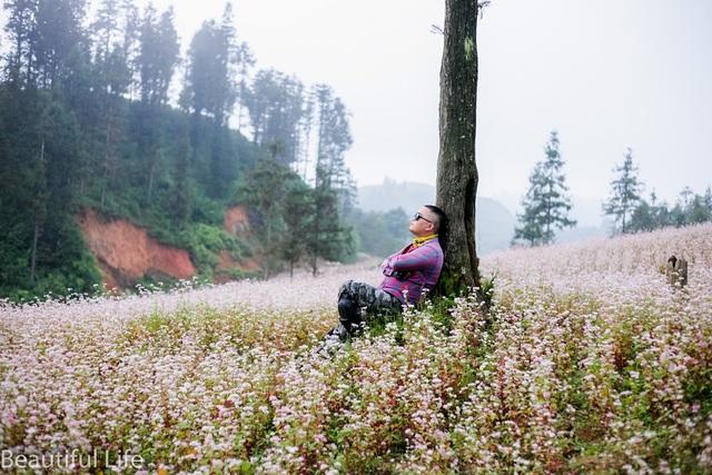 Tận mắt cánh đồng hoa tam giác mạch tuyệt đẹp ở rẻo cao Tây Bắc - 8