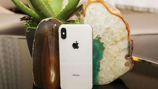 Mặt lưng của máy sử dụng chất liệu kính kết hợp cùng khung viền kim loại nguyên khối. Điểm nhấn trong thiết kế này đó là camera được đặt dọc thay vì ngang như iPhone 8 Plus. Apple cũng tích hợp khả năng kháng bụi nước đạt chuẩn IP68 cho thiết bị cao cấp nhất của hãng.
