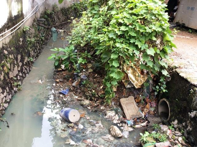 Lòng kênh bị lấn chiếm và xả rác