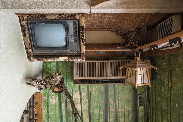 Nơi này bị bỏ hoang gần 20 năm trước