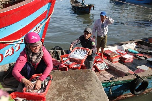 Ngư dân địa phương đang mạnh dạn chuyển đổi sang đánh bắt trung và xa bờ