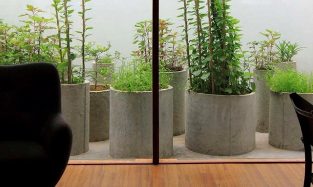 Ngoài điểm nhấn mặt trước và mặt sau là vườn đứng thì bên trong ngôi nhà có nhiều không gian dành riêng cho các chậu trồng rau xanh rất gần gũi với thiên nhiên.