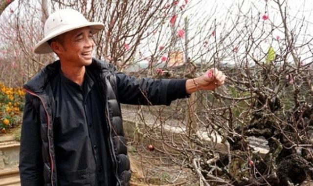 Theo chủ vườn, trung bình mỗi ngày ông đón khoảng hơn 200 khách đến chụp ảnh và vãn cảnh. (Ảnh: vietnamnet)