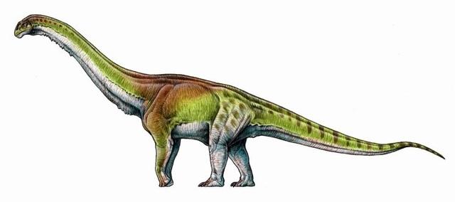 Các nhà cổ sinh vật học đã phát hiện ra một sinh vật lớn nhất từng lang thang trên Trái Đất.