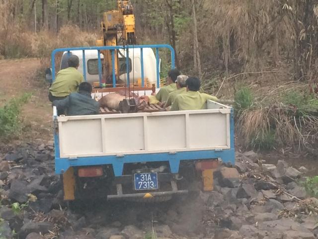 Lực lượng kiểm lâm Vườn quốc gia Yok Đôn đưa thi thể anh Cường về nhà mai táng