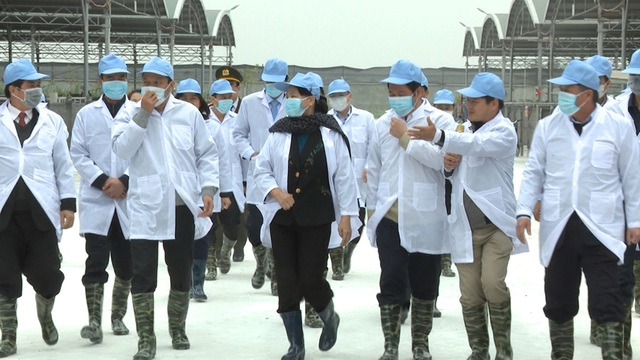 Chủ tịch Quốc hội Nguyễn Thị Kim Ngân thăm và làm việc với một số DN trên địa bàn tỉnh Thái Bình số 4