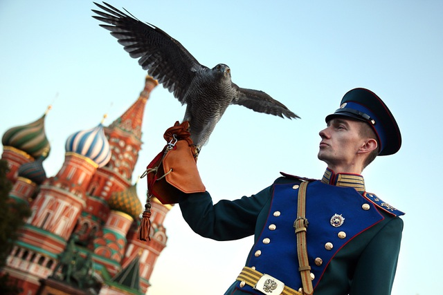 Chim săn mồi được Điện Kremlin tuyển dụng từ những năm 1980 (Ảnh: Sputnik)