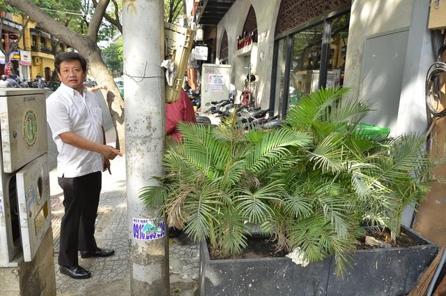Nhà hàng để 2 chậu cây trên vỉa hè bị phạt 5 triệu đồng