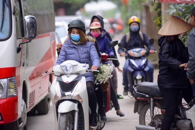 Không chỉ có du khách ở Hà Nội mà nhiều người ở các tỉnh xa như Hải Dương, Hưng Yên, Thái Nguyên… cũng tìm đến vườn hoa Nhật Tân để chụp ảnh với cúc họa mi.