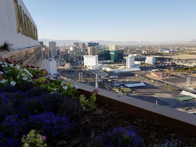 Một góc thành phố Las Vegas nhìn từ tầng 63 khách sạn Mandalay Bay. Ảnh: Anh Huy