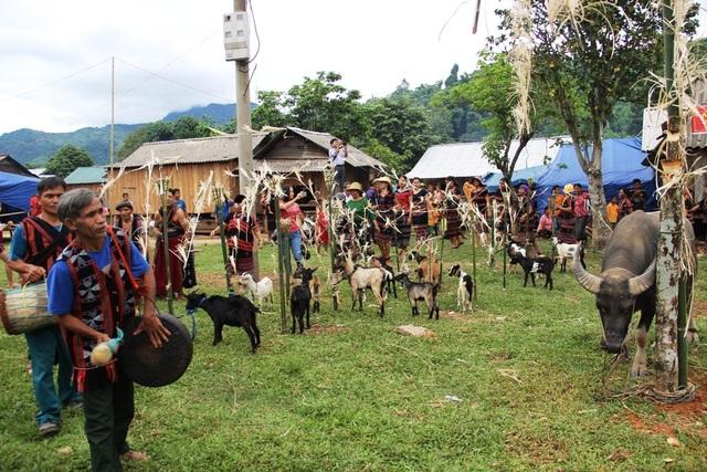 Các già làng và người dân múa quanh khu vực tế thần linh