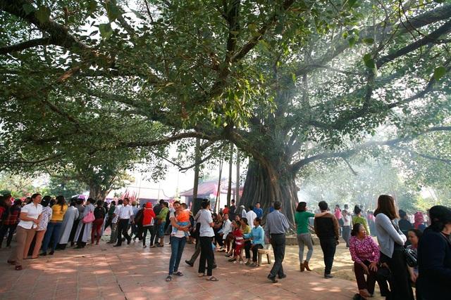 Đền Hoàng Công Chất - nơi có cây đa hàng trăm năm tuổi.