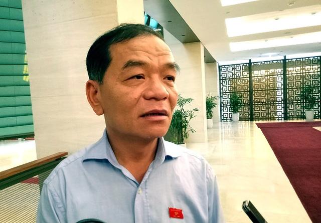 Đại biểu Quốc hội Lê Thanh Vân đề nghị phải có hình thức kỷ luật thích đáng với những sai phạm trong vấn đề tài chính ngân sách (ảnh: BD)