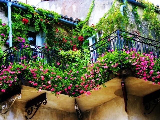 Ban công rực rỡ sắc hoa là điểm nhấn cho căn nhà của bạn.