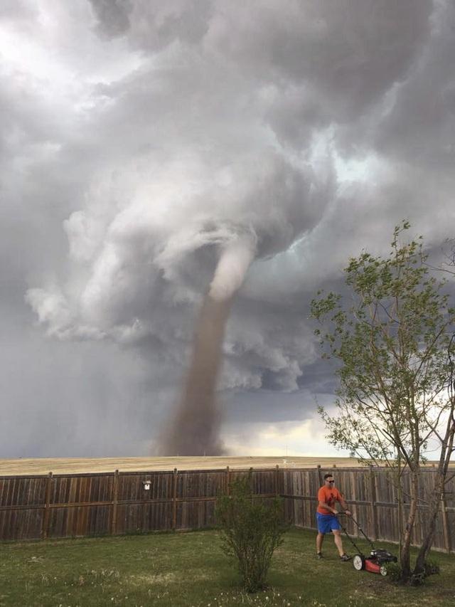 Bức ảnh chụp Theunis thản nhiên cắt cỏ dù lốc xoáy sau lưng gây bão trên mạng (Ảnh: BBC)