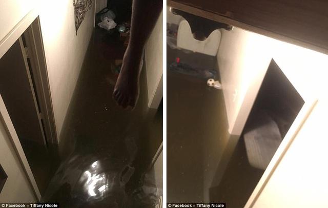 Một người dân đăng tải ảnh ngôi nhà bị ngập sâu trên mạng xã hội và kêu gọi trợ giúp (Ảnh: Facebook)