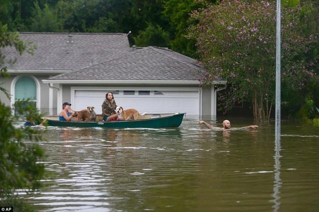 Đã có các cảnh báo rằng bão Harvey có thể gây thiệt hại về vật chất tương đương với siêu bão Katrina vào năm 2005, vốn khiến hơn 1.000 người thiệt mạng và thiệt hại lên tới khoảng 108 tỷ USD (Ảnh: AP)