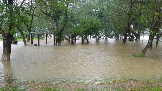 Nước tràn vào công viên trước đường Trần Hưng Đạo
