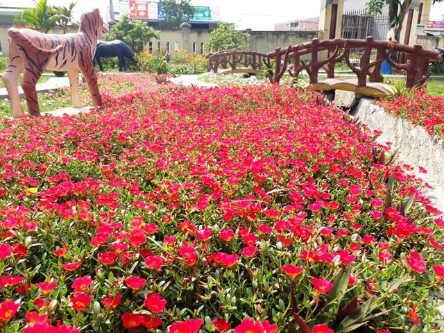 Những con đường rực rỡ sắc hoa nơi miền quê thanh bình - 24