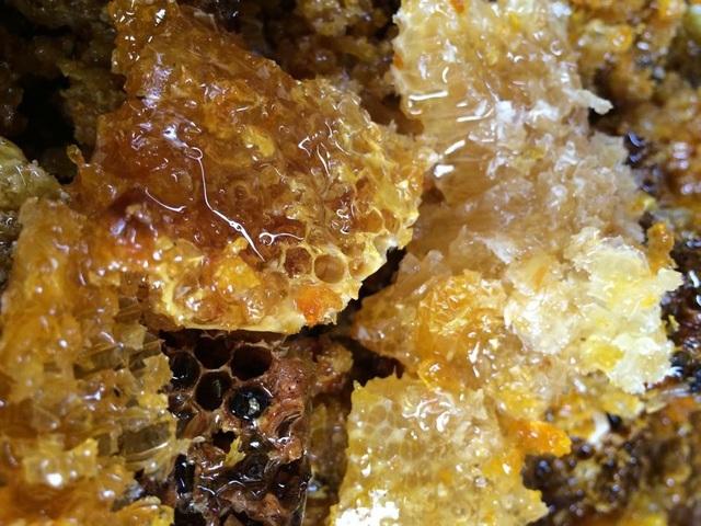 Để ong cho nguồn mật dồi dào, trong vòng một năm người nuôi phải di chuyển hết vùng này đến vùng khác để kiếm thức ăn cho ong. Những nơi lý tưởng để kiếm mật phải là nơi phong phú, dồi dào về lượng nhãn, keo, hoa cỏ lào như Sông Mã, Hưng Yên, Hòa Bình,…
