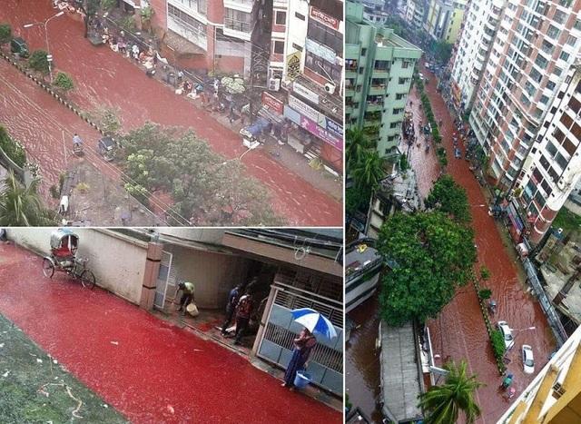 Hình ảnh đường phố Dhaka ngập máu hòa lẫn nước mưa