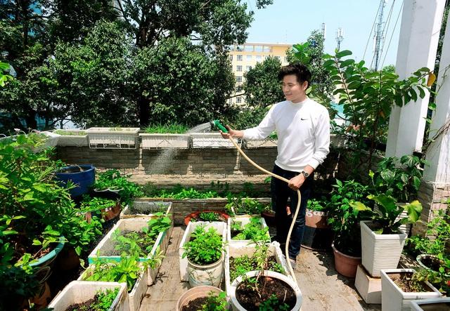 Nơi đây trồng khá nhiều loại rau phổ biến, thông dụng và được chăm sóc hàng ngày để góp phần chăm lo cho bữa ăn của gia đình.