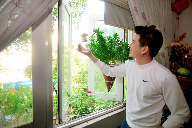Điểm đặc biệt của nơi này là các hướng cửa sổ đều được mở ra không gian bên ngoài, tận dụng khoảng không để trồng khá nhiều cây xanh. Từ lối đi, cửa sổ, rất nhiều cây kiểng được trưng dụng tạo cho nhà có được không gian mát mẻ và thoải mái.
