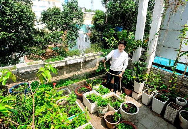 Một không gian khác được MC Vũ Mạnh Cường khá ưu ái là vườn rau sạch trên sân thượng