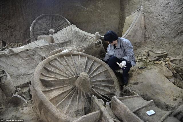 Cỗ xe ngựa cổ nằm trong hố chôn