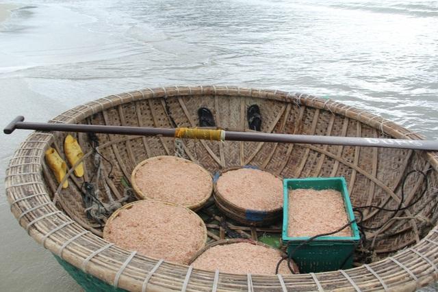 Mỗi đêm, tàu của ngư dân có thể thu về từ 15 - 20 triệu đồng từ ruốc