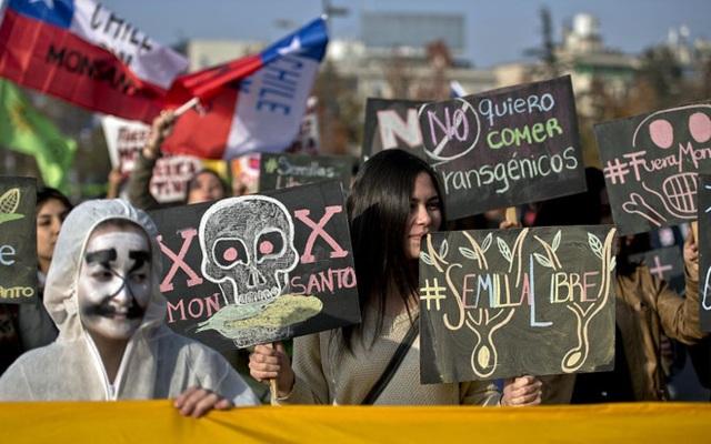 Một cuộc biểu tình chống Monsanto ở Chile năm 2015. Ảnh: AFP.