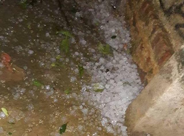Xuất hiện mưa đá tại xã Mậu Lâm, huyện Như Thanh