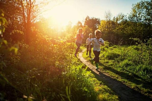 7 loại thương tích hay gặp nhất trong những ngày hè - 4