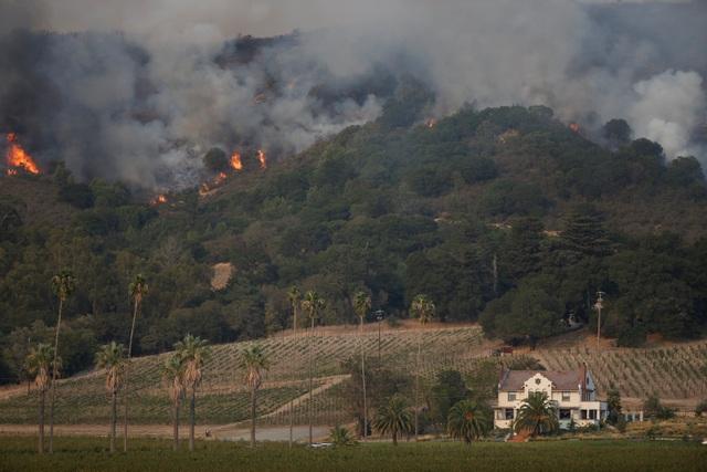 Ước tính có khoảng 1.500 công trình đã bị phá hủy và đám cháy đã thiêu rụi diện tích rộng hơn 20.000 ha tại 8 hạt của bang California.