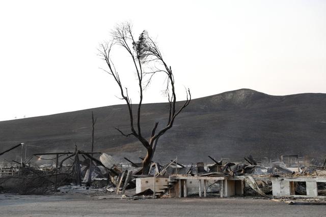Cảnh tượng đổ nát sau đám cháy ở Sonoma, California.