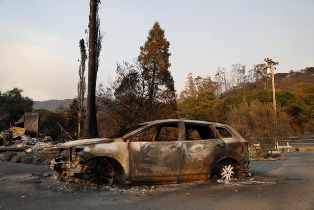 Thống đốc California Jerry Brown đã ban bố tình trạng khẩn cấp ở nhiều khu vực như hạt Napa, Sonoma, Yuba. Đây cũng là những khu vực sản xuất rượu vang nổi tiếng của Mỹ.